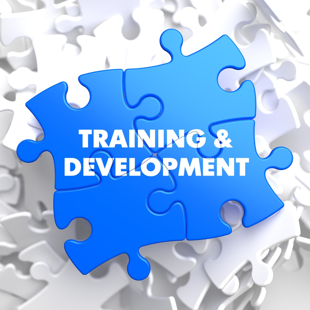 Training and Development Written on Blue Puzzle Pieces. Educational Concept.  3D Render..jpeg